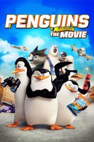 Οι πιγκουίνοι της Μαδαγασκάρης