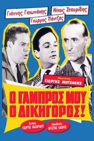 Ο Γαμπρός Μου, Ο Δικηγόρος! (1962) – Ταινίες Online