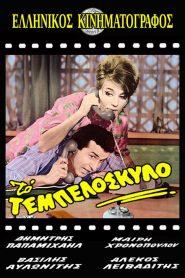 Το τεμπελόσκυλο 1963 – watch online